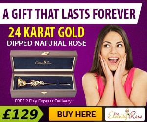 amazing 24 karat gold rose