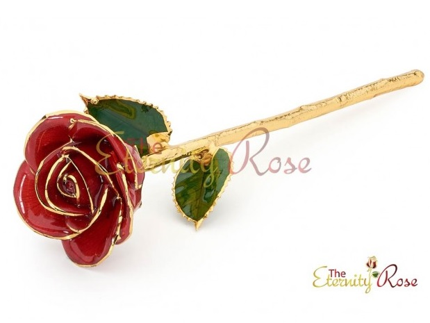 red glazed rose
